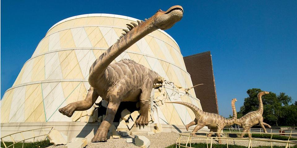 """<p><strong>Best for the Whole Family </strong><br></p><p>The Children's Museum of Indianapolis is <a href=""""https://www.bestproducts.com/fun-things-to-do/g2390/best-museums-in-america/?slide=20"""" rel=""""nofollow noopener"""" target=""""_blank"""" data-ylk=""""slk:one of the best kids' museums in the USA"""" class=""""link rapid-noclick-resp"""">one of the best kids' museums in the USA</a> — just try to get them to stop talking about the massive dinosaur """"attacking"""" the building's facade. Indy also has a great zoo and an IMAX theater, and each May, the <a href=""""https://go.redirectingat.com?id=74968X1596630&url=https%3A%2F%2Fwww.tripadvisor.com%2FAttraction_Review-g37209-d8820259-Reviews-Indy_500-Indianapolis_Indiana.html&sref=https%3A%2F%2Fwww.countryliving.com%2Flife%2Fg37186621%2Fbest-places-to-experience-and-visit-in-the-usa%2F"""" rel=""""nofollow noopener"""" target=""""_blank"""" data-ylk=""""slk:Indy 500"""" class=""""link rapid-noclick-resp"""">Indy 500</a> takes place. Plus, there's a growing farm-to-table foodie scene. </p><p><strong><em>Where to Stay:</em></strong> <a href=""""https://go.redirectingat.com?id=74968X1596630&url=https%3A%2F%2Fwww.tripadvisor.com%2FHotel_Review-g37209-d224259-Reviews-Hilton_Indianapolis_Hotel_Suites-Indianapolis_Indiana.html&sref=https%3A%2F%2Fwww.countryliving.com%2Flife%2Fg37186621%2Fbest-places-to-experience-and-visit-in-the-usa%2F"""" rel=""""nofollow noopener"""" target=""""_blank"""" data-ylk=""""slk:Hilton Indianapolis Hotel & Suites"""" class=""""link rapid-noclick-resp"""">Hilton Indianapolis Hotel & Suites</a>, <a href=""""https://go.redirectingat.com?id=74968X1596630&url=https%3A%2F%2Fwww.tripadvisor.com%2FHotel_Review-g37209-d576787-Reviews-Conrad_Indianapolis-Indianapolis_Indiana.html&sref=https%3A%2F%2Fwww.countryliving.com%2Flife%2Fg37186621%2Fbest-places-to-experience-and-visit-in-the-usa%2F"""" rel=""""nofollow noopener"""" target=""""_blank"""" data-ylk=""""slk:Conrad Indianapolis"""" class=""""link rapid-noclick-resp"""">Conrad Indianapolis</a></p>"""