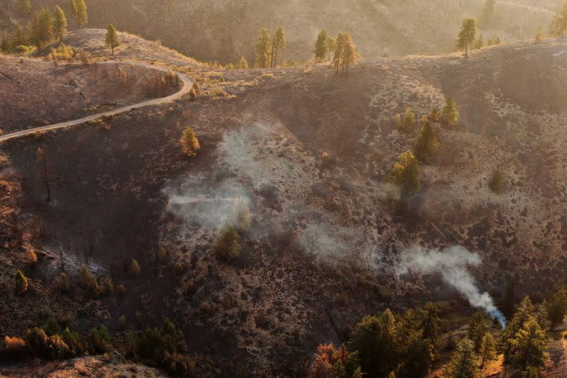 Fire damage from the Red Apple Fire near Wenatchee