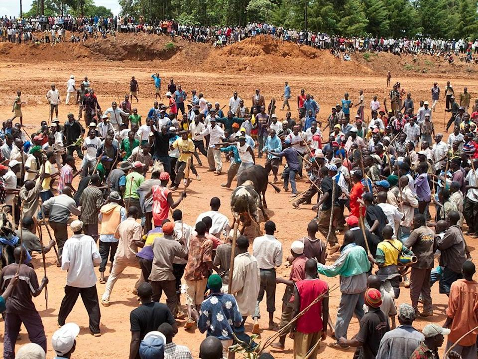 The one where…he witnesses a bullfight in KenyaEli Marias