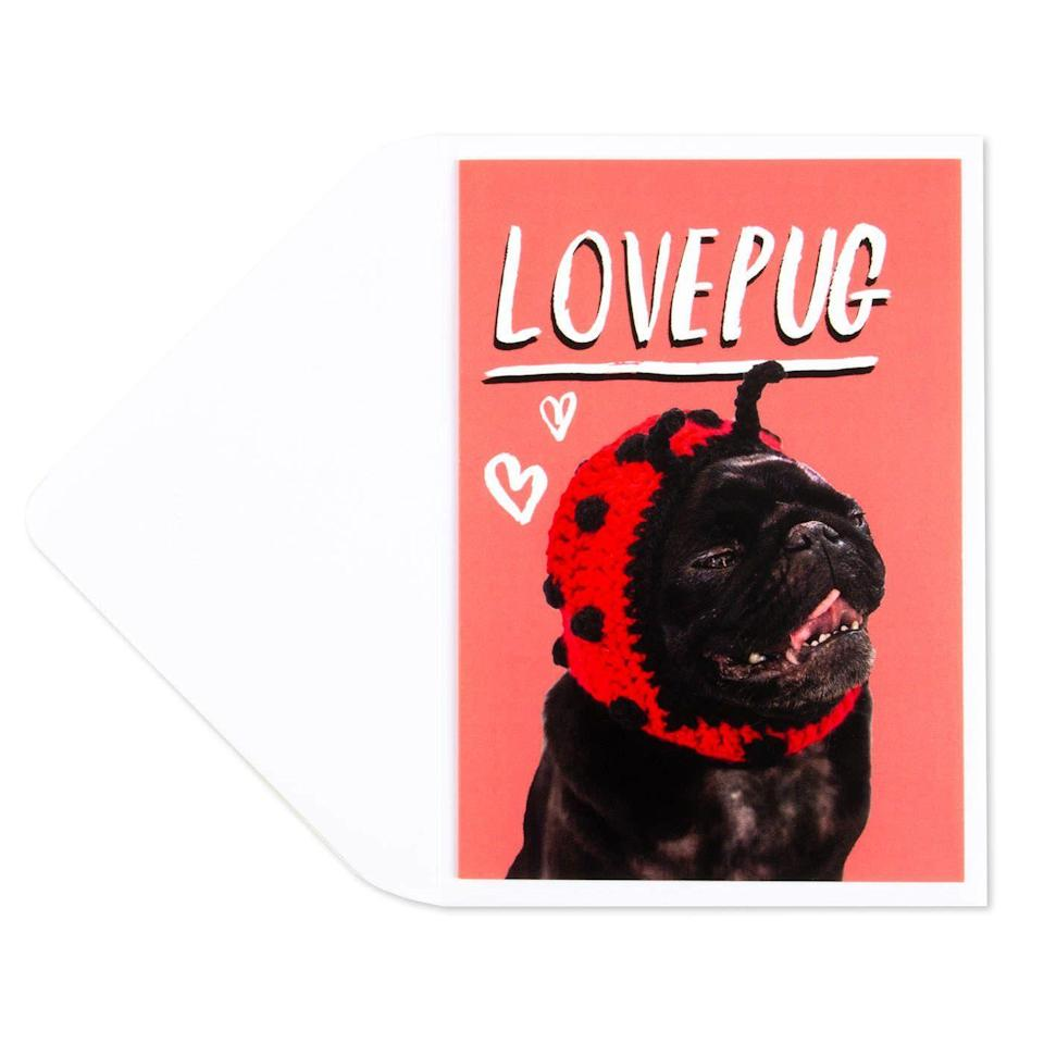 "<p>Make anyone's day with the heartwarming image of this lovepug.</p><br><br><strong>Papyrus</strong> Lovepug Valentine's Day Card, $4.95, available at <a href=""https://www.papyrusonline.com/lovepug-valentines-day-card"" rel=""nofollow noopener"" target=""_blank"" data-ylk=""slk:Papyrus"" class=""link rapid-noclick-resp"">Papyrus</a>"