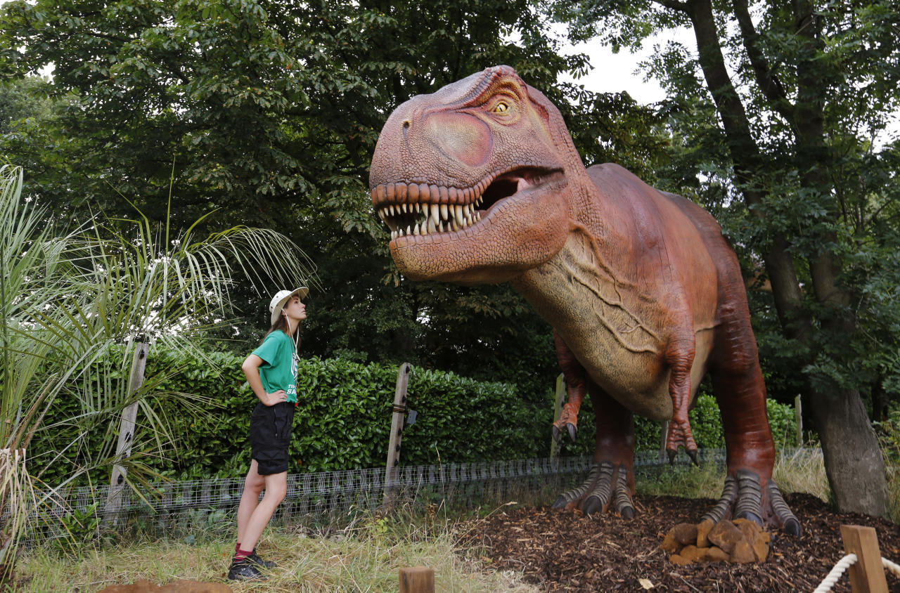 A tour guide poses with a replica of a T. Rex in London Zoo's new Time Travel Safari exhibit named Zoorassic Park in London, Thursday, July 20, 2017. The six-week exhibit opens Saturday, July 22, 2017, and features robotic dinosaurs from the Mesozoic era. (AP Photo/Caroline Spiezio)