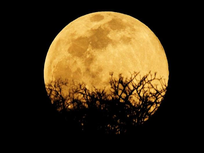 The Harvest Moon on 1 October will be one of two full moons in October 2020 (Getty Images)