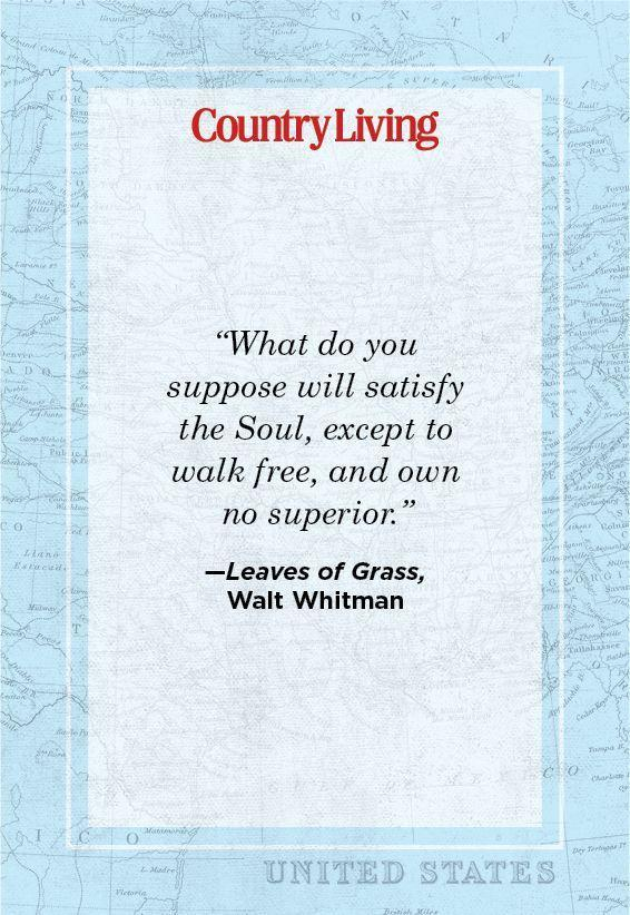 """<p>""""What do you suppose will satisfy the Soul, except to walk free, and own no superior?""""</p>"""
