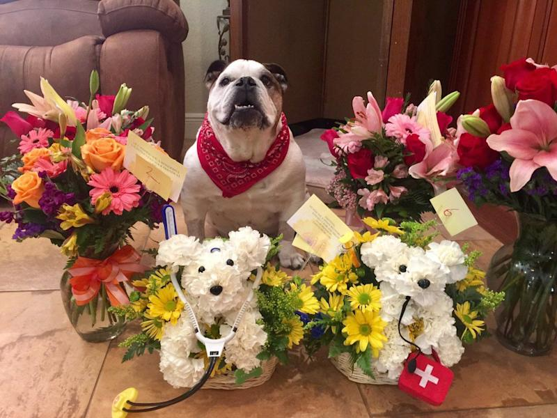 The Adorable Reason This Dad Ordered Flowers For His Dog