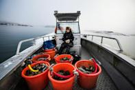 Klemming is among a handful of divers in Sweden who plunge into the icy waters in full scuba gear to collect the shellfish year-round