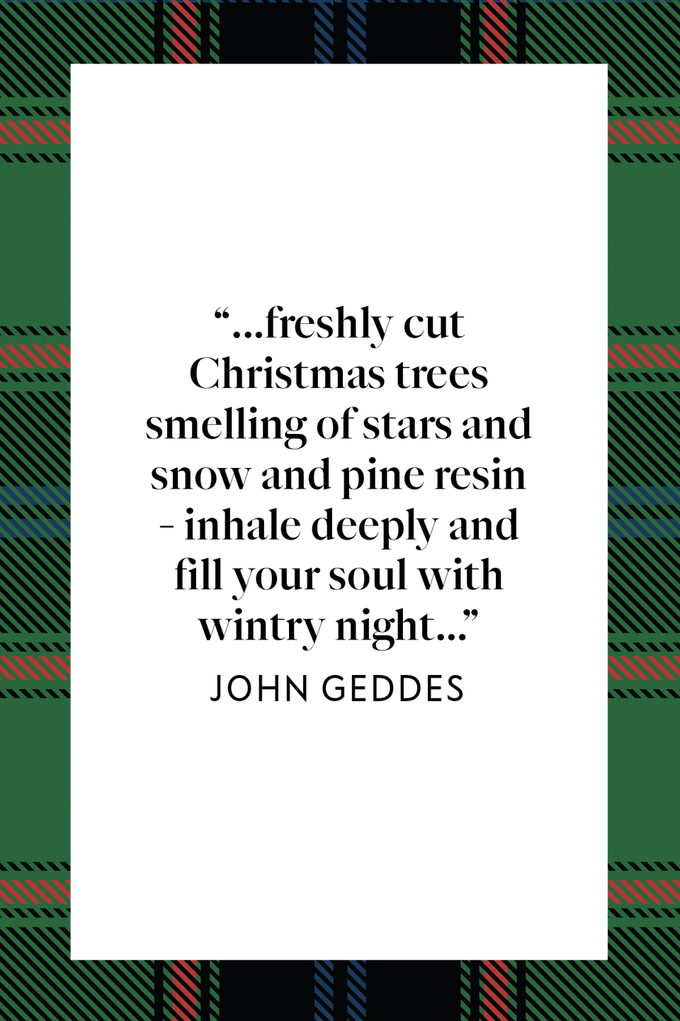"<p><em>New York Times</em> journalist John Geddes wrote ""...freshly cut Christmas trees smelling of stars and snow and pine resin - inhale deeply and fill your soul with wintry night..."" in his book, <a href=""https://www.amazon.com/Familiar-Rain-John-Geddes/dp/0983504407?tag=syn-yahoo-20&ascsubtag=%5Bartid%7C10072.g.34536312%5Bsrc%7Cyahoo-us"" rel=""nofollow noopener"" target=""_blank"" data-ylk=""slk:A Familiar Rain."" class=""link rapid-noclick-resp""><em>A Familiar Rain</em>.</a></p>"