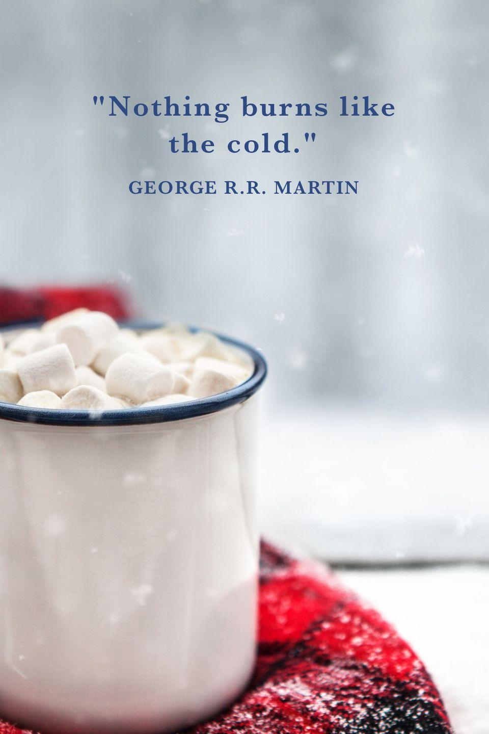 "<p>""Nothing burns like the cold."" </p>"