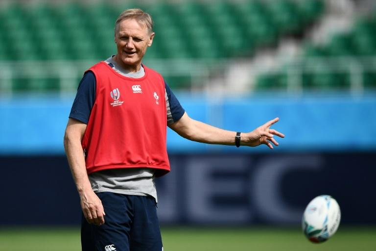 World Rugby appoints Schmidt to new high-performance role