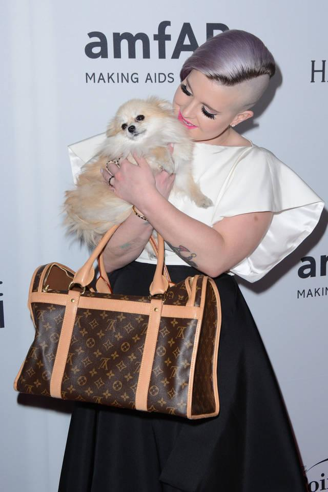 kelly osbourne das beste accessoire f r eine gala ist einfach ein hund. Black Bedroom Furniture Sets. Home Design Ideas