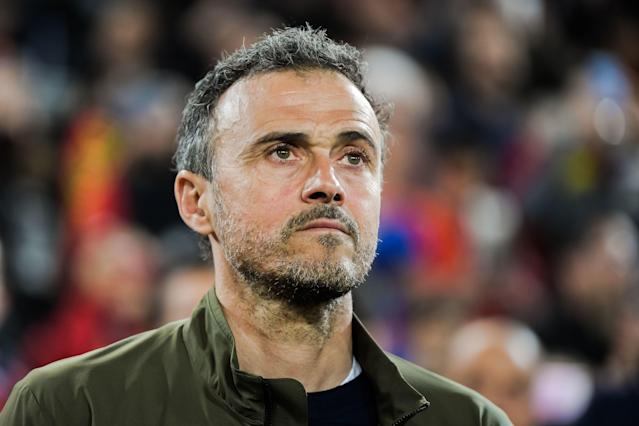 Can manager Luis Enrique lead Spain to glory like he did with Barcelona? (Reuters)