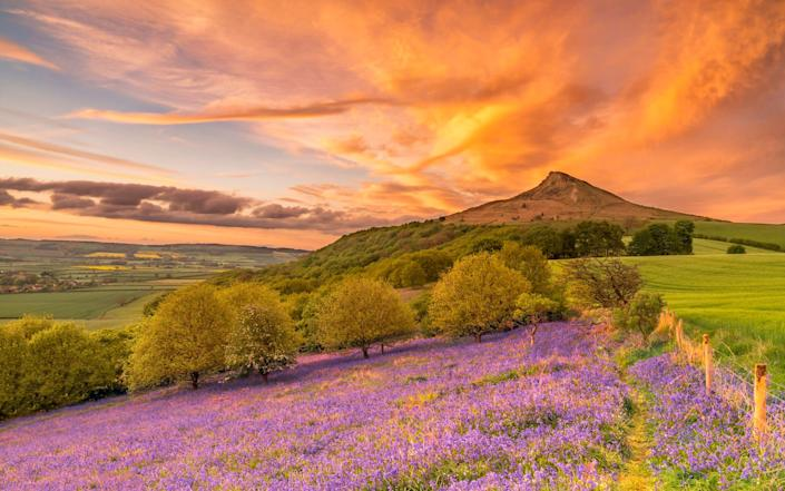 People living on one side of the famous landmark (Roseberry Topping in North Yorkshire) are being warned not to climb it because it is split in two by the coronavirus tier restrictions - Alan Cook / SWNS.com