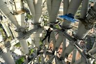 The adventure park opened in January on the 600-metre high Canton Tower