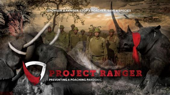 Project Ranger is an emergency intervention to protect frontline staff set up by Dereck and Beverly Joubert