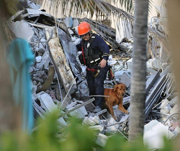 PHOTO: Fire rescue personnel conduct a search and rescue with dogs through the rubble of the Champlain Towers South Condo after the multistory building partially collapsed in Surfside, Fla., Thursday, June 24, 2021. (David Santiago/Miami Herald via AP)