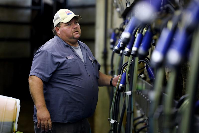Chuck Ripp troubleshoots a machine in the milking parlor at his farm, Ripp's Dairy Valley, in Dane, Wisconsin, Sept. 12, 2017. He says he works long hours at the farm, which he co-owns with his brothers Gary and Troy. The dairy relies heavily on Latino workers. (Coburn Dukehart/Wisconsin Center for Investigative Journalism)