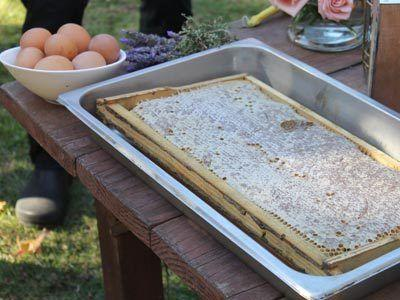The natural honey from the beehives. PHOTO: Alexandra Meyer