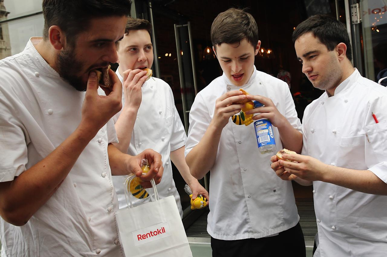 LONDON, ENGLAND - AUGUST 15: A group of passing chefs try pigeon burgers on a 'Pop Up' stand at One New Change on August 15, 2013 in London, England. The pest control specialist, Rentokill are celebrating their 85th anniversary, and for one day only were giving passers by the chance to try sweet chilli pigeon burgers, salted weaver ants, BBQ Mole Crickets and chocolate dipped worms amongst other things on their stand. (Photo by Dan Kitwood/Getty Images)