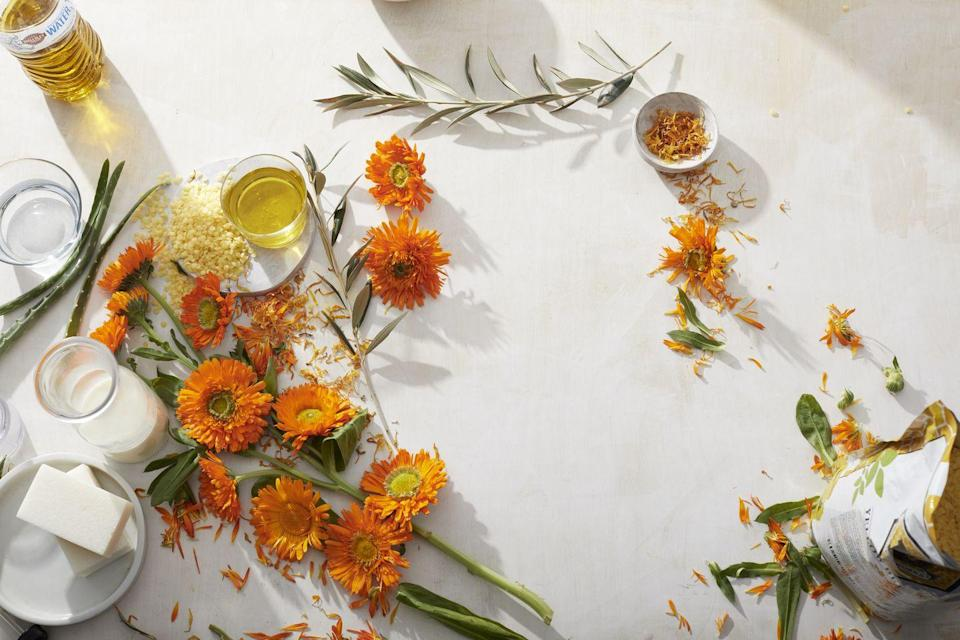 """<p>""""This hardy flower contains antioxidants that can <strong>help heal wounds</strong>. Make a salve by combining 16 oz extra virgin olive oil and about 1 cup dried calendula flowers in a double boiler on low; simmer for about 30 minutes until the oil takes on a yellowish hue and has a sweet scent. Strain out the flowers, then add 4 oz beeswax pellets, stirring until melted.""""</p><p><em>—Aubrey Corbett, N.D., a naturopathic physician and resident at the National University of Natural Medicine in Portland, OR</em></p>"""