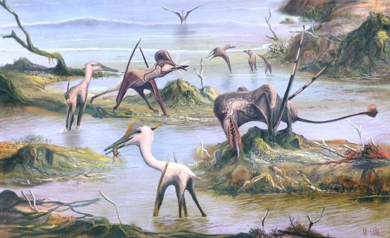 An artist's impression of southern Germany 150 million years ago, with a Pterodactylus in the foreground