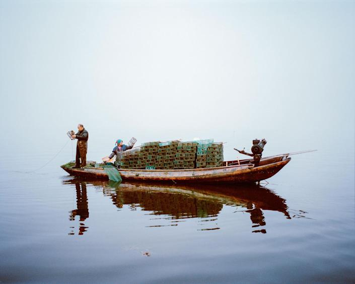 <p>Shrimp fishermen at dawn on the restored Lake Hong, Hubei Province, China, 2015. Although poems and stories about Lake Hong's purity are enshrined in Chinese cultural history, it has been damaged by unsustainable fishing practices. Over the past 14 years, WWF, its partners, local communities and government have helped to restore the lake, demonstrating how sustainable fishing methods can result in healthy ?sh, reduced pollution and clean water. (Photograph by Mustafah Abdulaziz/WWF-UK) </p>