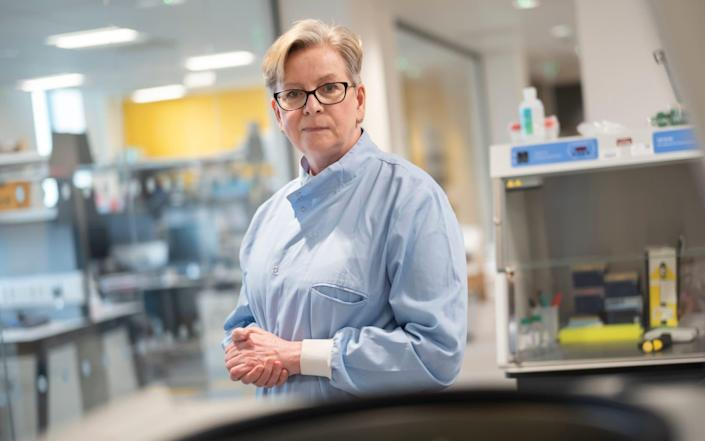 Prof Sharon Peacock said vaccinating people remains the best way to fight Covid and prevent the emergence of new variants - David Rose for The Telegraph