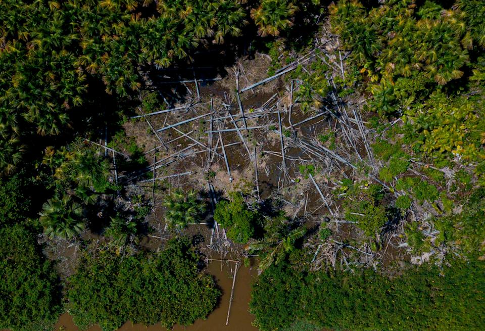 Aerial view of a deforested area in the municipality of Melgaco, Para State, Brazil (AFP via Getty Images)
