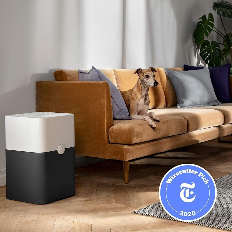 <p>You almost won't believe the mighty power this <span>Blueair Blue Pure 211+ Air Purifier</span> ($290) holds. The three-part filtration system can capture 99 percent of airborne pollutants, such as pet dander, allergens, odors, smoke, mold spores, and dust mites. This size is designed for medium rooms, ranging between 400 and 600 square feet.</p>