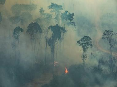 Brazil's experts raise alarm as Amazon witnesses 28% more fires in July than a year ago