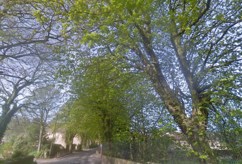 The incident happened in the Yorkshire village of High Melton (Picture: Google)