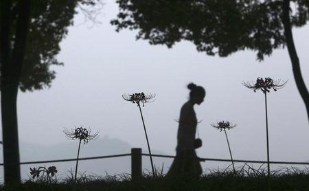 A visitor walks past blossoming flowers beside the West Lake in Hangzhou