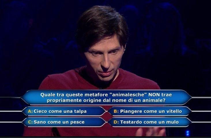 (Photo: Canale 5)