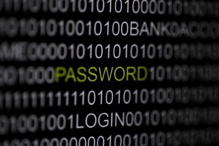 The word 'password' is pictured on a computer screen in this picture illustration taken in Berlin