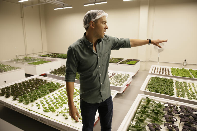 In this Thursday, Sept. 27, 2018, photo Iron Ox CEO Brandon Alexander looks out at his robotic indoor farm in San Carlos, Calif. Alexander spent a lot of time working his family's farm in Oklahoma before he headed off to the University of Texas to study robotics. After graduating, he moved to Silicon Valley, where he is returning to his roots by building robot farmers that roll maneuver through a suburban warehouse tending to rows of leafy, colorful vegetables that will soon be filling salad bowls in restaurants and eventually may be in supermarket produce aisles, too. (AP Photo/Eric Risberg)