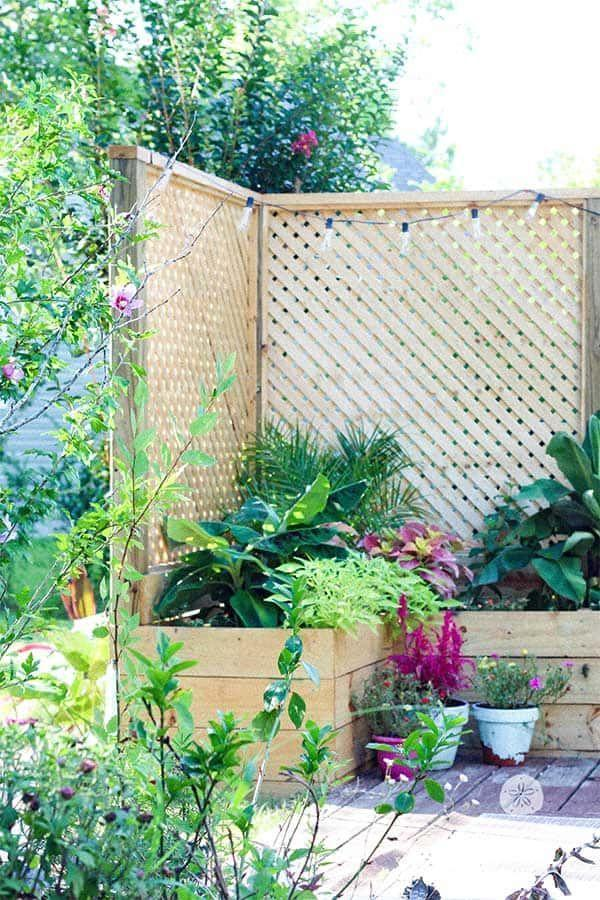 "<p>Is your backyard or deck wide open to everyone's view? Provide some much-needed privacy with this beautiful fence and planter combo. </p><p><strong>Get the tutorial at <a href=""https://www.sanddollarlane.com/diy-outdoor-privacy-screen/"" rel=""nofollow noopener"" target=""_blank"" data-ylk=""slk:Sand Dollar Lane"" class=""link rapid-noclick-resp"">Sand Dollar Lane</a>.</strong></p><p><a class=""link rapid-noclick-resp"" href=""https://go.redirectingat.com?id=74968X1596630&url=https%3A%2F%2Fwww.homedepot.com%2Fp%2F4-ft-x-8-ft-Pressure-Treated-Garden-Wood-Lattice-127738%2F202518776&sref=https%3A%2F%2Fwww.thepioneerwoman.com%2Fhome-lifestyle%2Fgardening%2Fg32651791%2Fdecorative-garden-fence-ideas%2F"" rel=""nofollow noopener"" target=""_blank"" data-ylk=""slk:SHOP WOOD LATTICE"">SHOP WOOD LATTICE</a></p>"