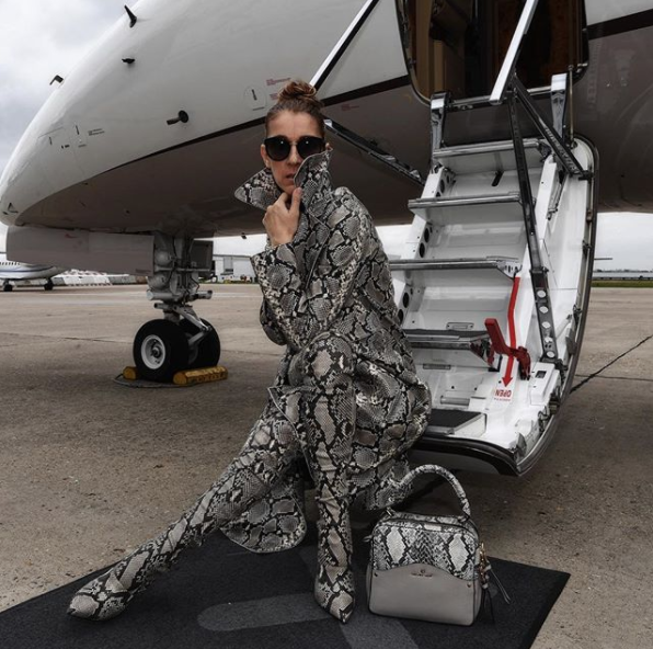 After becoming a widow at 47, Celine Dion is finding her footing again.