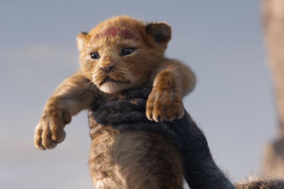 Simba in The Lion King (Credit: Disney)