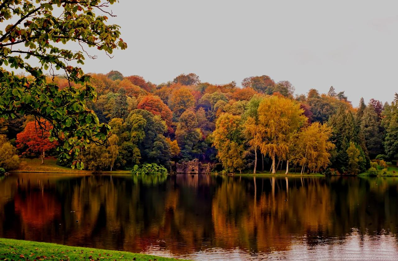 """<p>During autumn, the beautiful National Trust gardens at Stourhead are emblazoned with deliciously golden colours. Wrap up warm and make a day trip of it. </p><p><a class=""""body-btn-link"""" href=""""https://go.redirectingat.com?id=127X1599956&url=https%3A%2F%2Fwww.nationaltrust.org.uk%2Fstourhead&sref=https%3A%2F%2Fwww.countryliving.com%2Fuk%2Fwildlife%2Fcountryside%2Fg34231699%2Fautumn-colours%2F"""" target=""""_blank"""">BOOK VISIT</a></p>"""