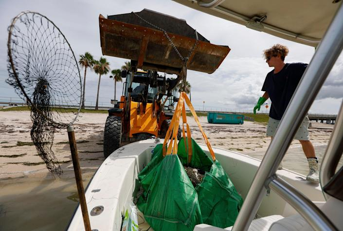 Salvatore Cuccia, 21, waits as a front loader picks up a bag of dead fish June 17 in Dunedin, Fla. Pinellas County had small boats retrieving dead fish in Dunedin and around Clearwater Harbor. The fish kill is attributed to a red tide bloom.