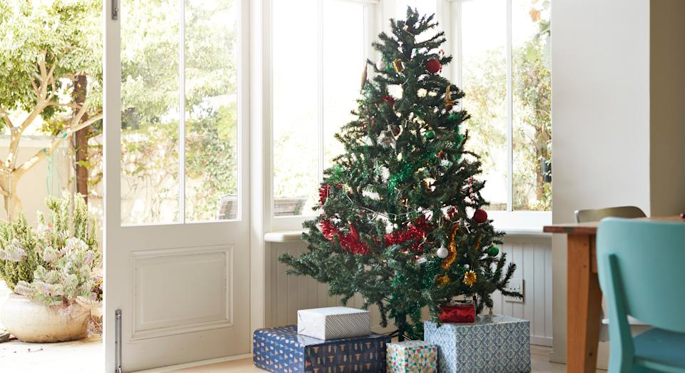 More Britons are expected to purchase Christmas trees this festive season. (Getty Images)