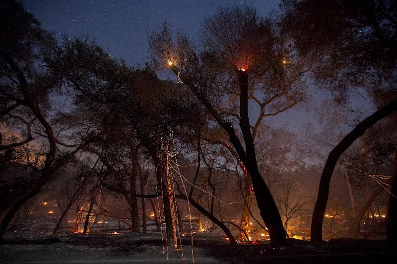 A freshly-burned forest is seen under the stars at the Lilac Fire in the early morning hours of December 8, 2017 near Bonsall, California (AFP Photo/DAVID MCNEW)