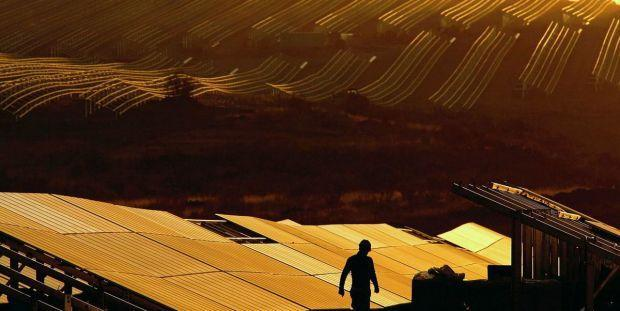 A man walking in front of a solar plant.