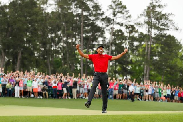 Tiger Woods returned to the world's top 10 for the first time in five years (AFP Photo/Kevin C. Cox)