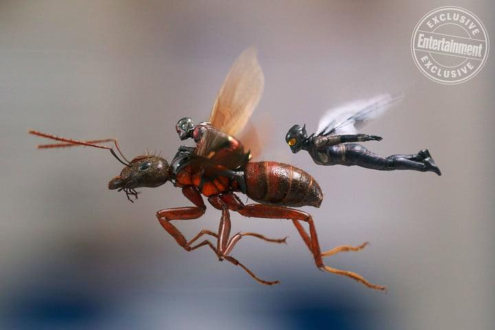 ant man and the wasp movie news ew01