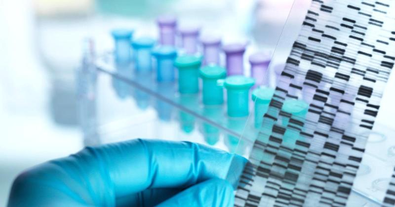 US Official: American DNA info at risk for theft by foreign powers