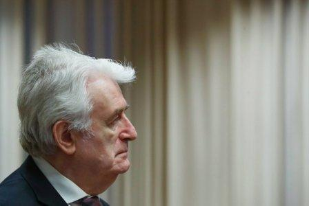 Former Bosnian Serb leader Radovan Karadzic appears in a courtroom before the International Residual Mechanism for Criminal Tribunals (MICT), which is handling outstanding war crimes cases for the Balkans and Rwanda, in The Hague, Netherlands, April 24, 2018. REUTERS/Yves Herman/Pool