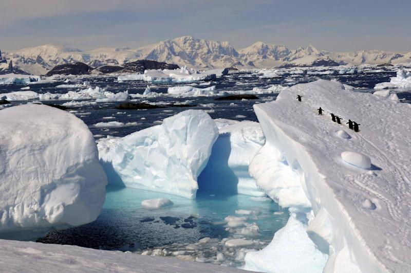Reaching Antarctica as a solo traveller doesn't have to break the bank (Getty Images/iStockphoto)