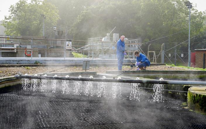 Scientists examine wastewater for traces of Covid as part of a Cranfield University study - Christian Trampenau/Cranfield University/via Reuters