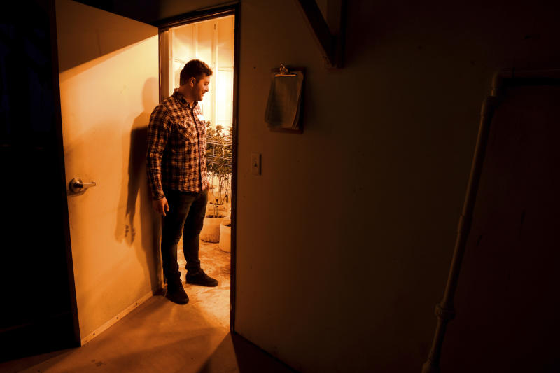 FILE - In this April 3, 2019, file photo, Oswaldo Barrientos stands in the doorway of a grow room at the marijuana facility where he works near downtown Denver. Immigration authorities on Friday, April 19, 2019 said that anyone with any involvement with marijuana, regardless of whether it's legal in the state they live in, can be denied from citizenship because the drug is still outlawed by federal law. (AP Photo/Thomas Peipert, File)