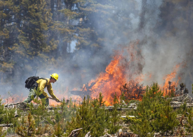 <p>A wildland firefighter works to contain the flames at the Buffalo Fire site Wednesday, June 13, 2018, near Silverthorne, Colo. (Photo: Hugh Carey/Summit Daily News via AP) </p>