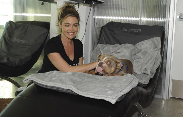 <p>Denise Richards spends her day quarantined with her husband Aaron Phypers at his Q360 healing center in Malibu, California, helping dogs in need from Road Dogs & Rescue.</p>